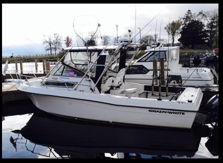 Furuno FCV-582L Fish Finder